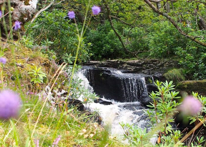 Waterfalls & Whisky On The West Highland Way